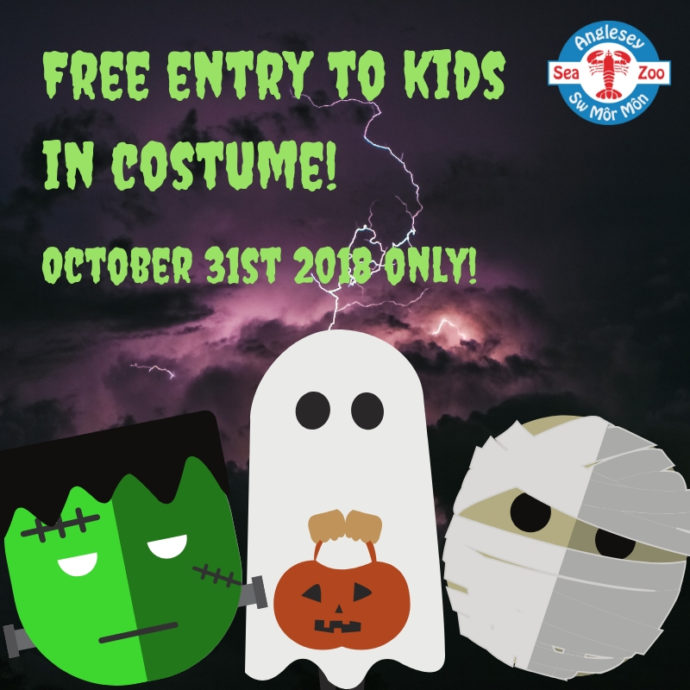 Kids In Costume Free Of Charge