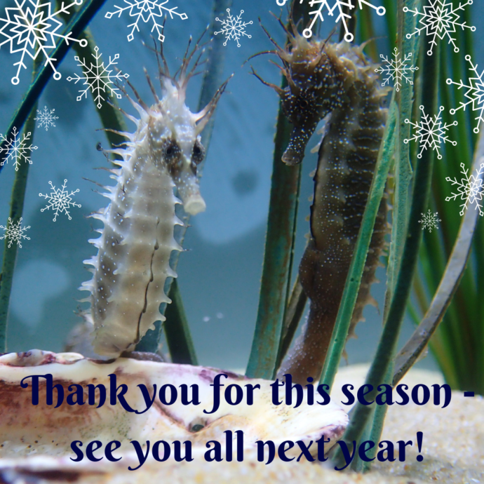 Thank You For This Season See You All Next Year