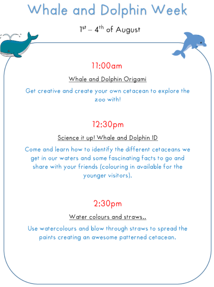 Whale And Dolphins Week Activities Poster