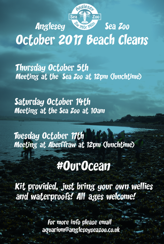 Beach Cleans Poster Copy Shrunk